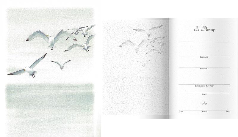 Gulls-Series